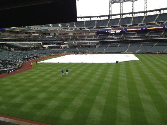 52413 Tarp on the field