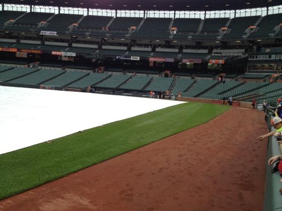 61013 It's a tarp